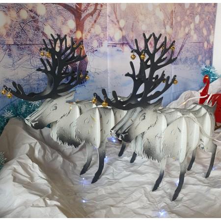 Traineau avec rennes